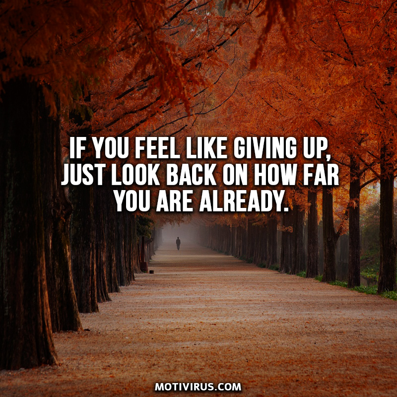 If you feel like giving up, just look back on how far you are already.