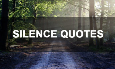 Best Quotes on Silence