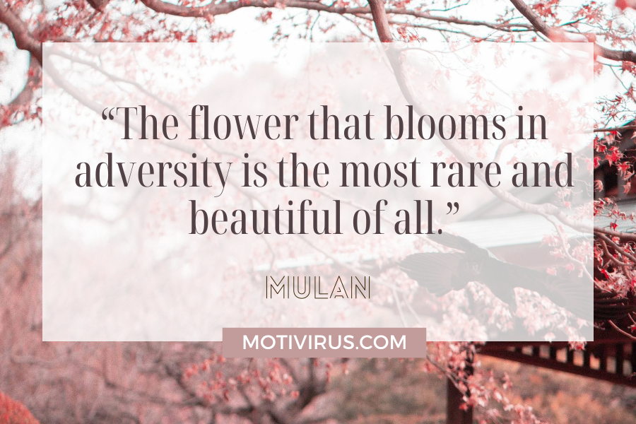 """""""The flower that blooms in adversity is the most rare and beautiful of all.""""  from Mulan with cherry blossoms in background"""