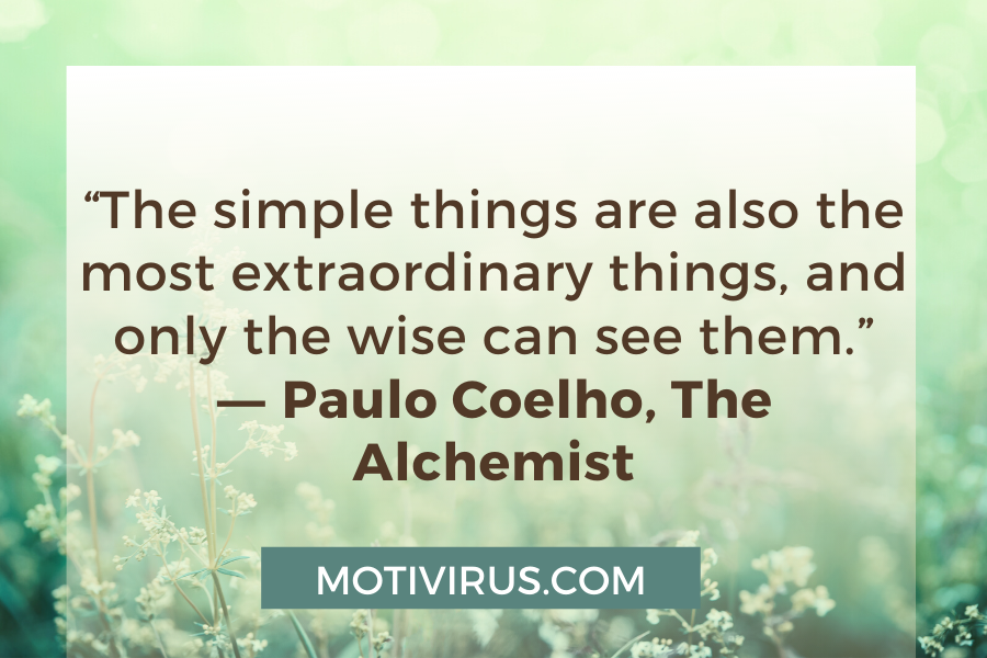 """""""The simple things are also the most extraordinary things, and only the wise can see them."""" ―Paulo Coelho,The Alchemist"""