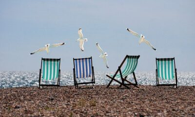 Summer, Beach, Seagulls, Deckchairs, Sea